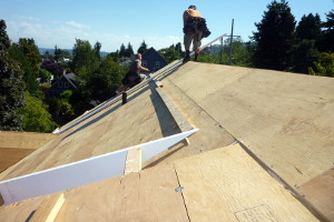 Custom Home Roof